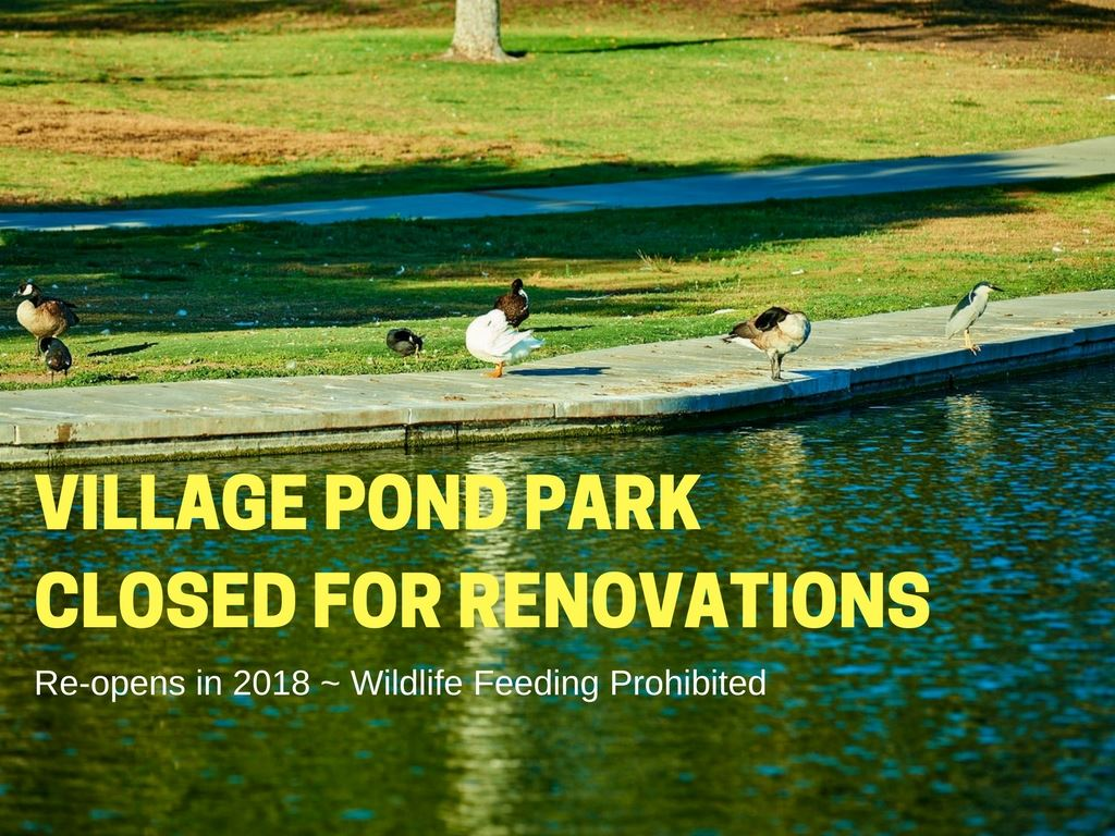 Village Pond Park Renovations