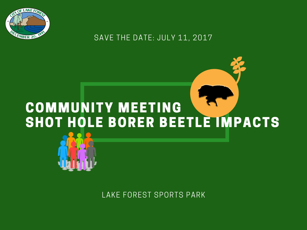 Community Meeting: Shot Hole Borer Beetle Impacts