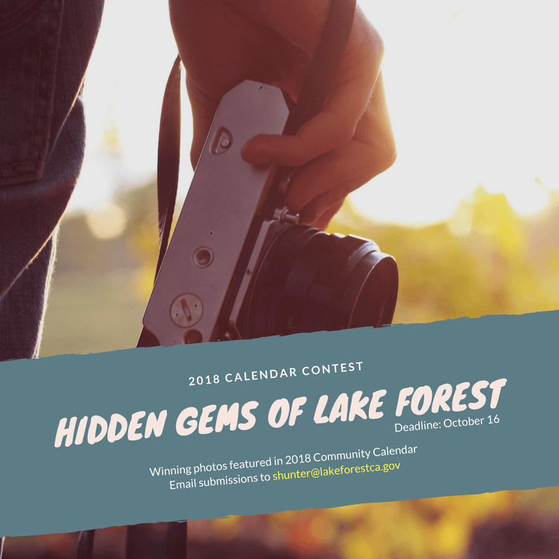 Hidden Gems of Lake Forest