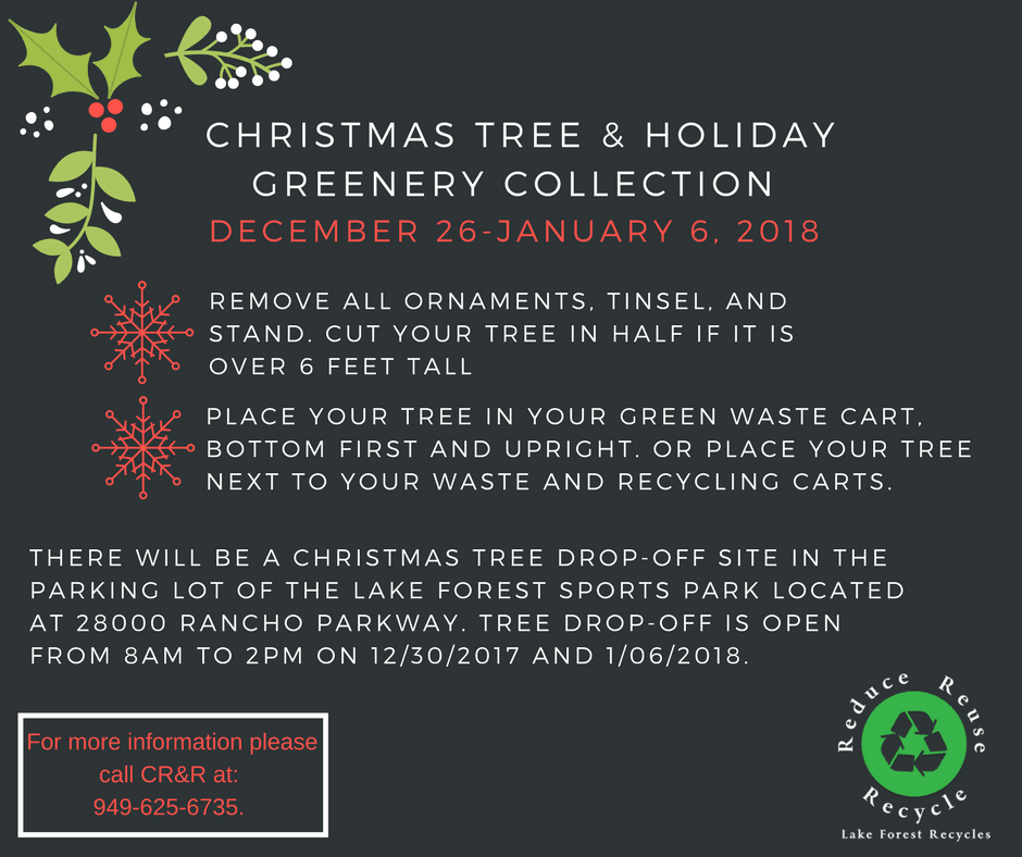Christmas Tree Collection Schedule and Rules