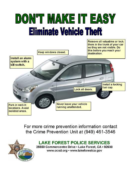 Don't Make It Easy Vehicle Theft