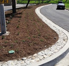 Gowdy and Ridge Route garden bed at side of road